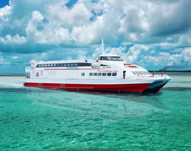 1 day Bimini Bahamas cruise